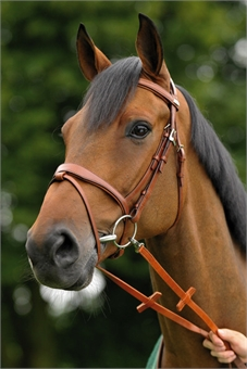 Stubben 1800c Bridle Snaffle-stubben-Top Notch Wholesale