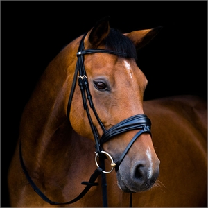 Stubben 2800 Switch Bridle-stubben-Top Notch Wholesale