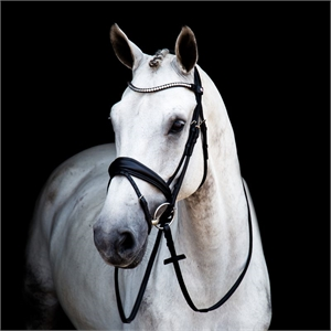 Stubben Magic Tack Switch Bridle-stubben-Top Notch Wholesale